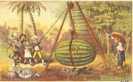 Cuban Queen Watermelon - Rice Seeds Advertising Card