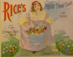 Rice's Popular Flower Seeds – Rice Seeds Advertising
